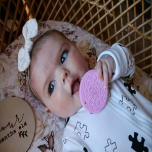 little-Woods-pink-Teething-toy
